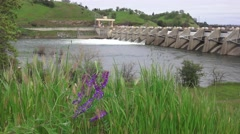 American River dams,   Nimbus blowing grasses - stock footage