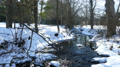 Creek in the snow.  Stock Footage