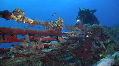 Scuba diver swims over Cousteau's shark cage wreck - Red Sea, Sudan Stock Footage