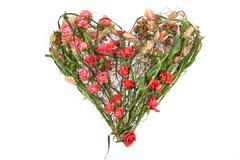 Floristic Composition - stock photo