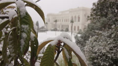Livadia winter facade - stock footage
