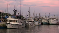 Fishing boats at sunrise, port of Puntarenas - Costa Rica Stock Footage