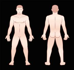 Nude Man Front View Back View - stock illustration