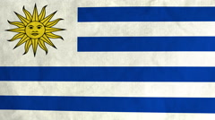 Uruguayan flag waving in the wind (full frame footage) Stock Footage