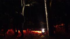 People enjoy amazing autumn lights art on tree branch leaves. Tilt up. 4K Stock Footage