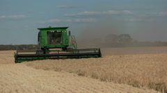 side on view of a barley harvest in western australia - stock footage