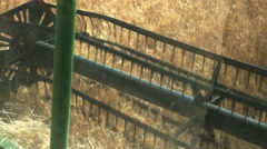 grain header close up from inside the cabin - stock footage