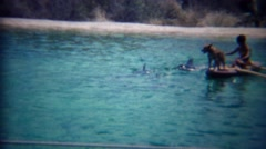 1963: Dog rides outrigging canoe boy feeds dolphins show. Stock Footage