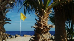 Yellow flag on a background of blue sky, palm trees in the foreground Stock Footage