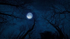 Looking Up At The Moon And Trees Stock Footage