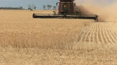 Wheat harvesting close up Stock Footage
