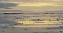 Dolly pan of broken sea ice in golden light on calm waters of arctic bay Stock Footage