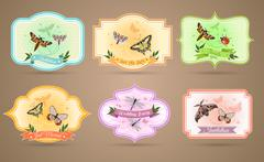 Insects Emblems Set Stock Illustration