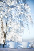 Two cups of tea on winter background Stock Photos