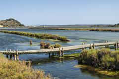 Peyriac-de-Mer (Languedoc-Roussillon, France): pond Stock Photos