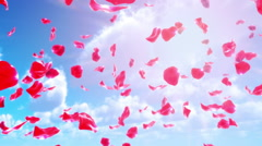 Rose Petals Falling from Sky (Loop) Stock Footage