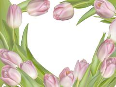 Tulip flowers on white background. EPS 10 - stock illustration