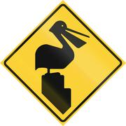 Road sign used in the US state of Texas - Pelicans Stock Illustration