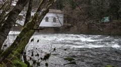 Upper McKenzie River HD Video Stock Footage