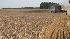Combine harvesting wheat Stock Footage