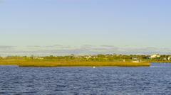 Static Shot Of Marshland And Harbor, Ocean Bird Flies Past Camera Stock Footage