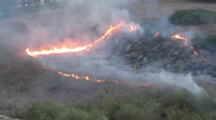 Brush and Grass Fire - stock footage