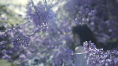 Stock Video Footage of Girl smelling blooming tree flowers in springtime