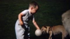 1959: Toddler knocked over by small dog cries like a baby. Stock Footage