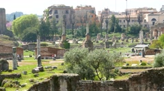 Forum Romanum Stock Footage