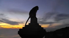 Silhouette of monkey against the evening sky,Uluwatu Temple,Bali. Stock Footage