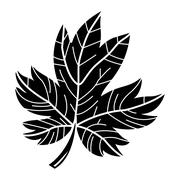 Maple Leaf Vector Icon - stock illustration