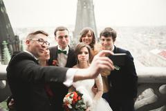 Bridesmaids, groomsmen and wedding couple making selfie with panoramic view of - stock photo