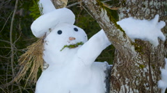 A big white snowman hugging a tree - stock footage