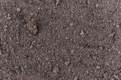 Soil Texture Stock Photos