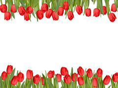 Isolated tulip frame arrangement. EPS 10 Stock Illustration