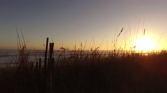 New Smyrna Beach Backlighting SandDunes Sea 03 Stock Footage