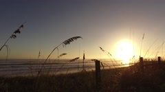 New Smyrna Beach Backlighting SandDunes Sea 12 Stock Footage