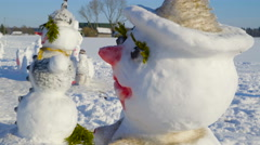 Stock Video Footage of The sideview look of the snowman with lashes