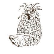 Stock Illustration of Pineapple in vintage style. Line art vector illustration