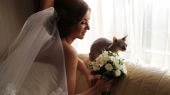 Bride with her beloved cat on your wedding day. Stock Footage