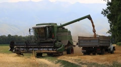 Combine harvester pours out wheat into the truck Stock Footage