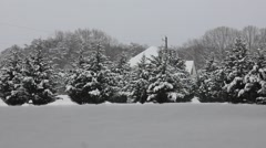 Winter Wonderland Stock Footage