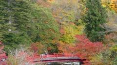 The Fudo stream and the red bridge at Mount Nakano-Momiji, Kuroishi city, Aom Stock Footage