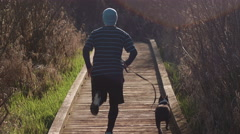 Young Man and Boston Terrier Dog Running Down Nature Boardwalk Stock Footage