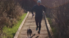Young Man and Boston Terrier Dog Running Up Nature Boardwalk Stock Footage