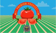 Tomato vintage advertising poster - Metal sign and label design. - stock illustration