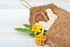 Easter decoration and fresh spring narcissus flowers. Stock Photos