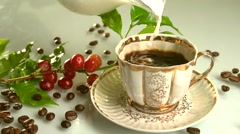 Red coffee beans on a branch of coffee tree.Pouring milk into a cup of coffee. Stock Footage
