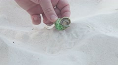The man took his fingers a small hermit crab Stock Footage