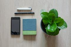 Top view of stationery and pepperomia plant on wood floor - stock photo
